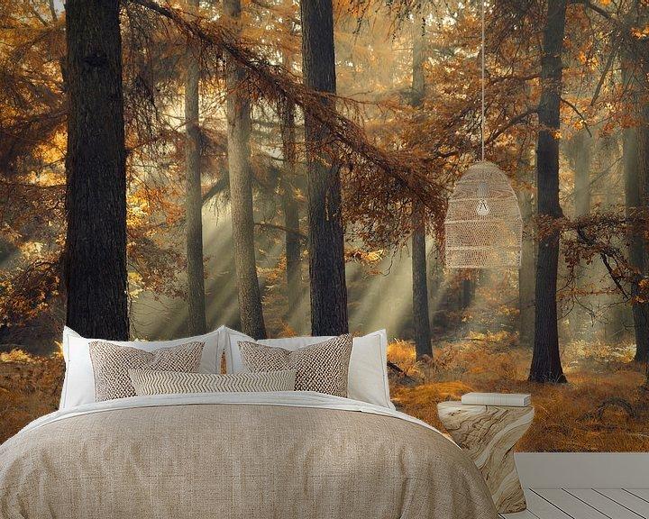 Sfeerimpressie behang: Magical brown van Rob Visser