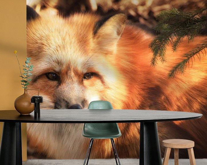 Impression: Fox sur Holger Debek