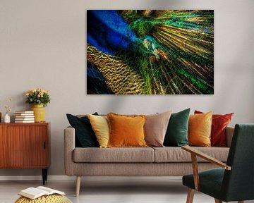 Peacock van Holger Debek