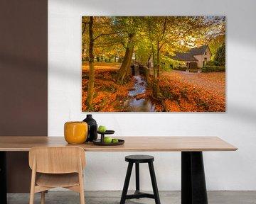 Moulin à eau et ruisseau sur le domaine de Staverden par une belle journée d'automne sur Rob Kints