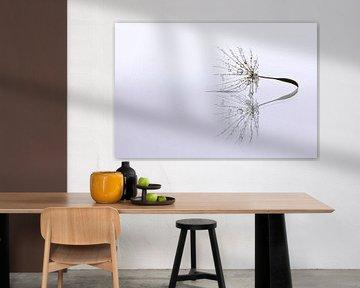 Dandelion Art - Druppel reflectie von Brigitte van Krimpen