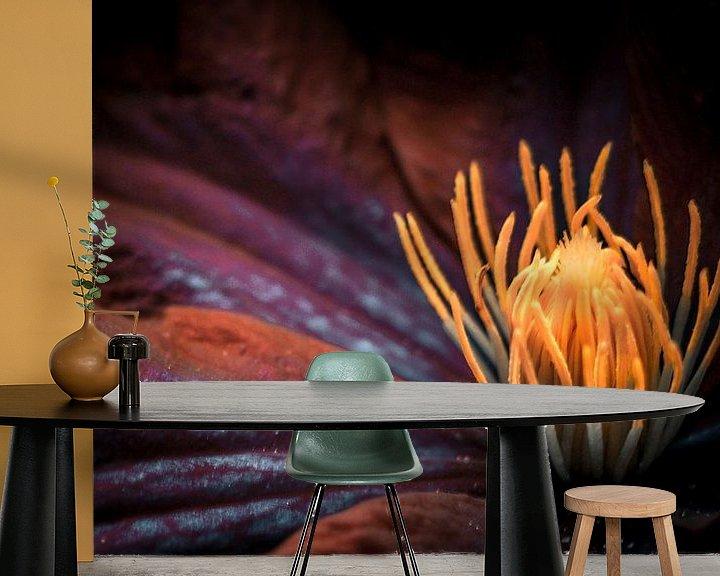 Beispiel fototapete: Clematisblüte von Holger Debek