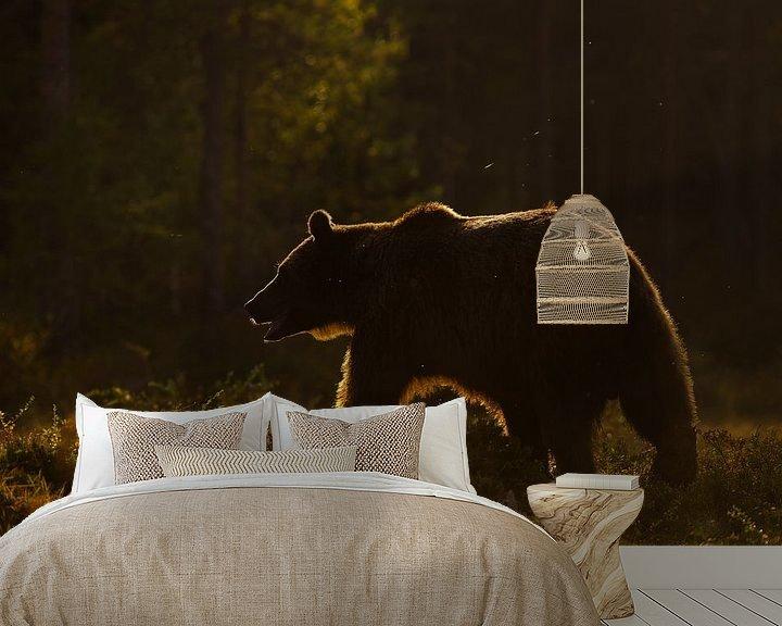 Sfeerimpressie behang: Bruine beer in het late zonlich. van Alex Roetemeijer
