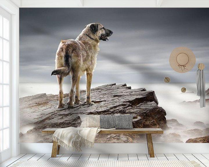 Sfeerimpressie behang: Bono on top of the world van Natasja Claessens