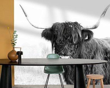 Schotse hooglander 001 van Carola Stroy