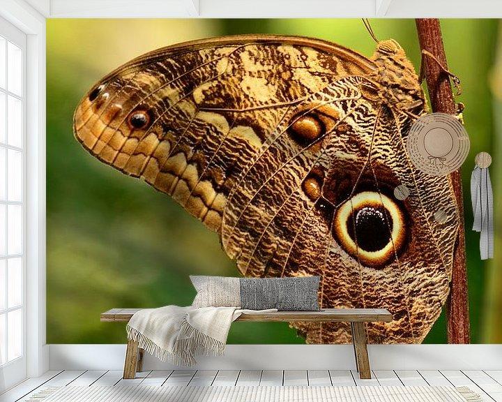 Beispiel fototapete: Bruine vlinder von Rene Mensen