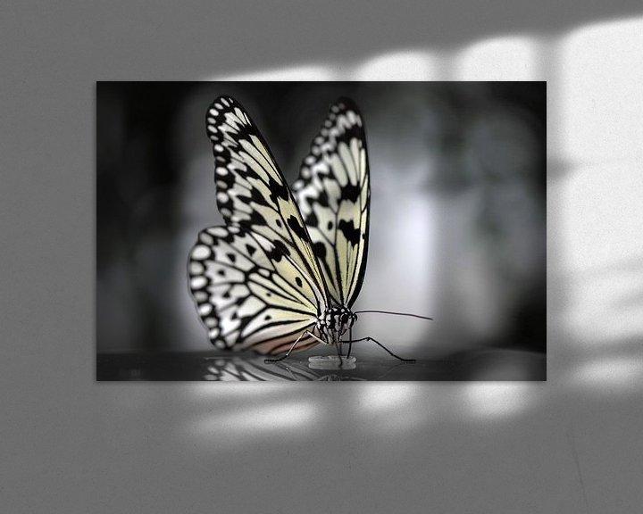 Impression: Vlinder in zwart wit sur Rene Mensen