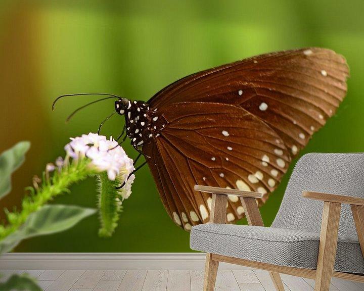 Impression: Bruine vlinder sur Rene Mensen