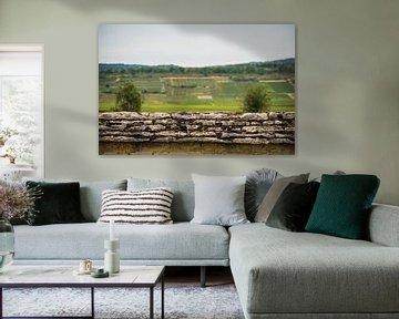 Die Mauer von Onno van Kuik