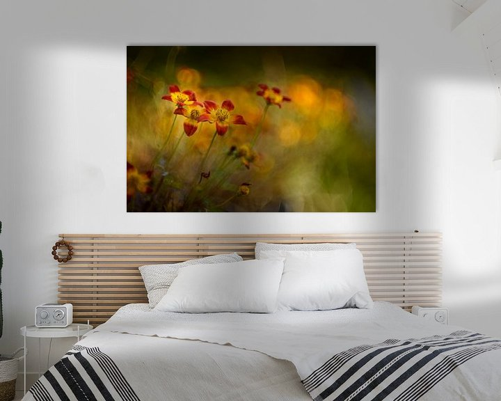 Sfeerimpressie: Autumn colours van Christl Deckx