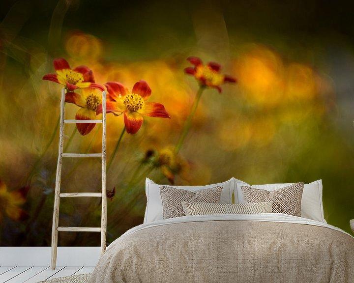 Sfeerimpressie behang: Autumn colours van Christl Deckx