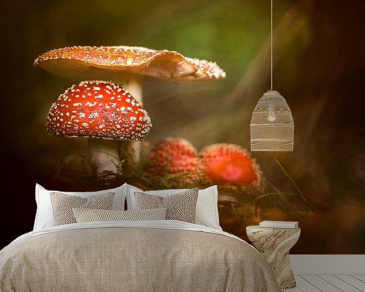Sfeerimpressie behang: Fairytale van Christl Deckx