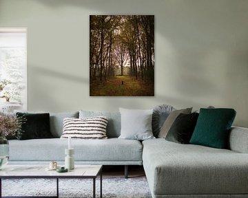 Autumn forest van Luis Boullosa