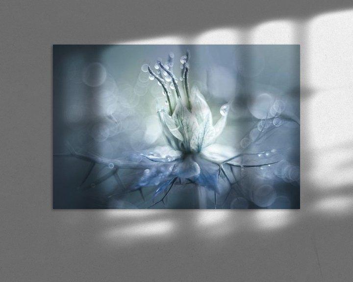 Sfeerimpressie: Symphony in blue van Christl Deckx
