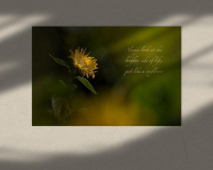 Sfeerimpressie: The bright side van Christl Deckx