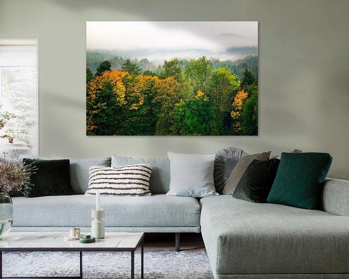 Beispiel: Wald im Nebel von Holger Debek