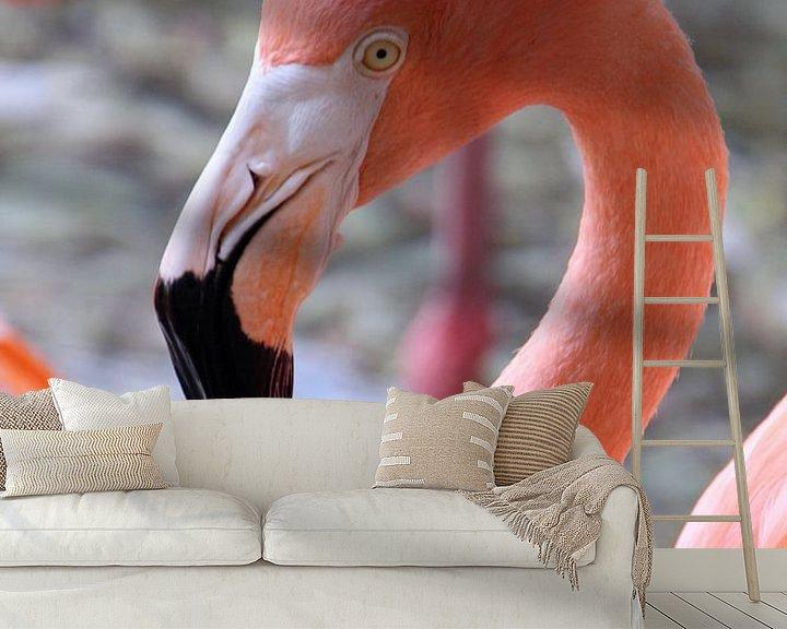 Beispiel fototapete: Drinking Flamingo von Ivo Schuckmann