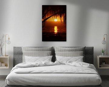 Tropical Sunset von Ivo Schuckmann