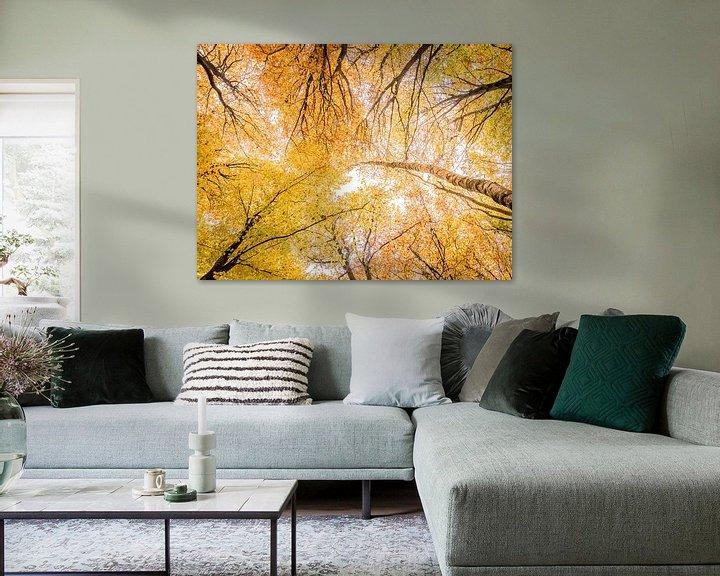 Sfeerimpressie: Bladerdak in herfstkleuren van Erik Veldkamp