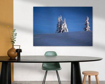 Een winterlandschap in de blauwe koude lucht van Barbara Koppe