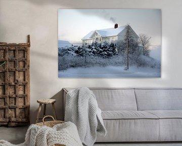 Zweedse witte winter