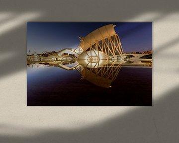 Wissenschaft bei Sonnenuntergang von Rene Siebring