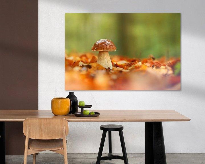Sfeerimpressie: Paddenstoel tussen bladeren van Erik Veltink