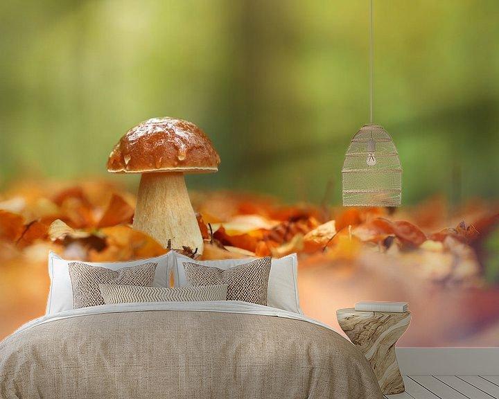Sfeerimpressie behang: Paddenstoel tussen bladeren van Erik Veltink