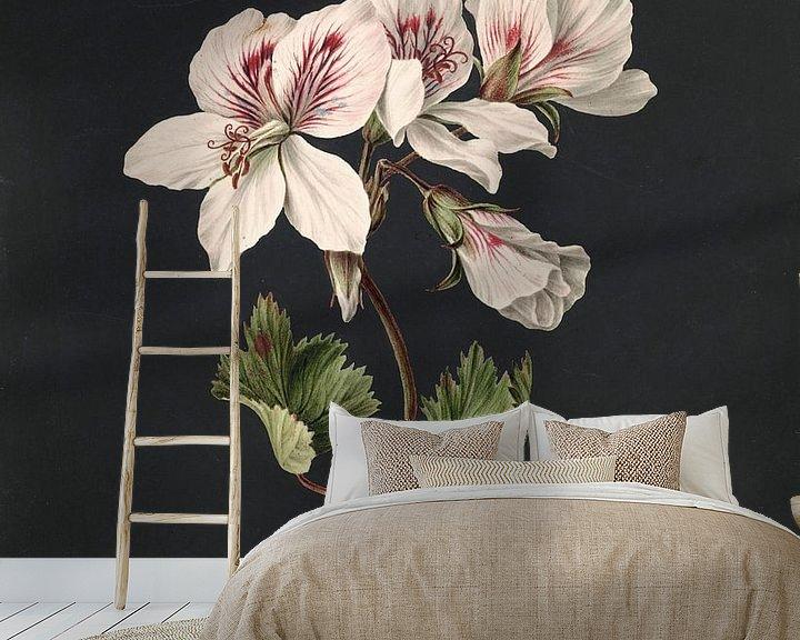 Sfeerimpressie behang: Pelargonium album bicolor, M. de Gijselaar