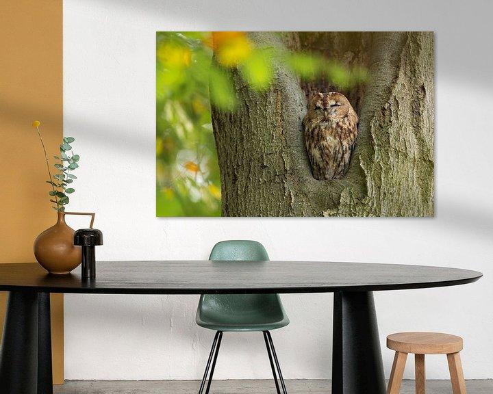 Sfeerimpressie: Bosuil zit in een boom te rusten. van Rob Christiaans