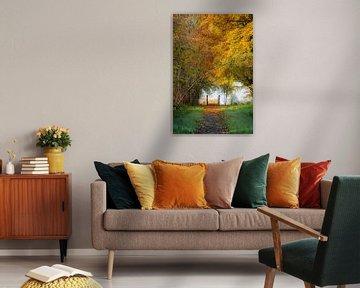 Bruggetje in een herfstlandschap (portrait) van Fotografie Jeronimo