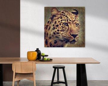 Leopard Portrait von Angela Dölling