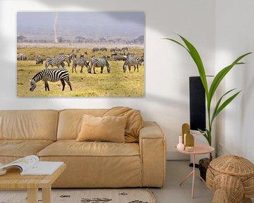 Weidende Zebras im Amboseli Nationalpark (Kenia) von Esther van der Linden