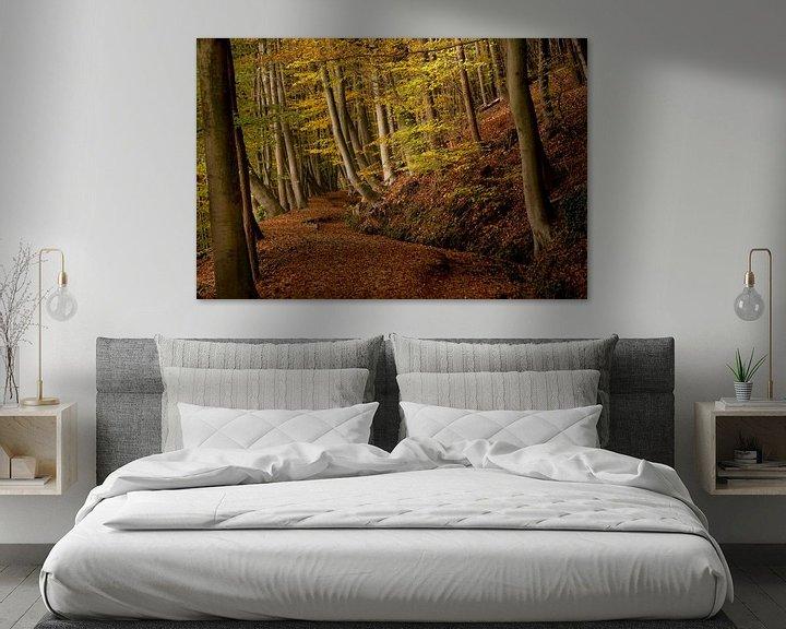 Sfeerimpressie: Herfst op de Sint Jansberg van Paul Wendels