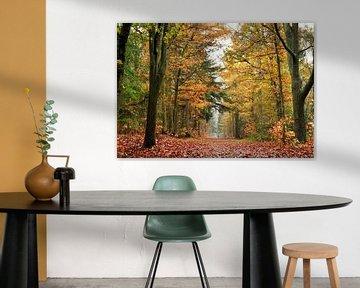 De herfst wandeling van Corinne Welp
