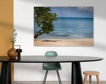 Caribisch strand met blauwe zee von Malu de Jong