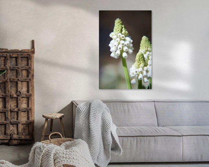 Sfeerimpressie: witte druifjes op een steeltje van Marianne Bras