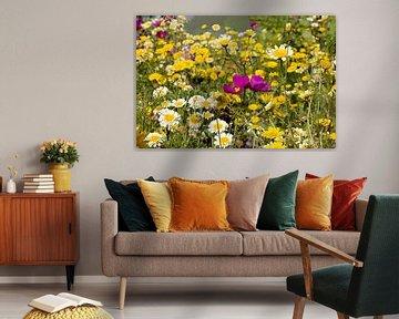 Akkerbloemen bloemen von W J Kok