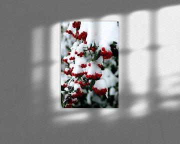 rood + groen + wit = kerstgevoel van Marianne Bras
