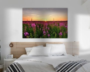 Weidenrosen bei Sonnenuntergang von John Leeninga