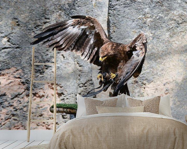 Beispiel fototapete: Echte roofvogel / hunting bird / oiseau de chasse von melissa demeunier