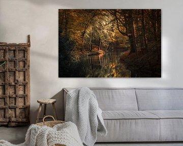 Into the Woods van Marco de Graaff