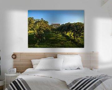 Romantische Villa met druivenranken van Patrick Verhoef