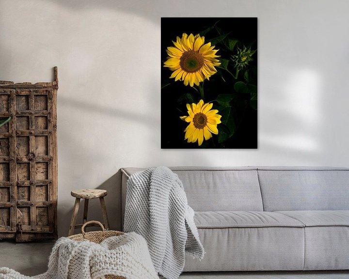 Sfeerimpressie: Zonnebloemen van schylge foto