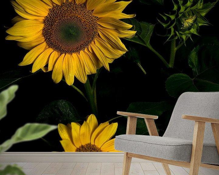 Sfeerimpressie behang: Zonnebloemen van schylge foto