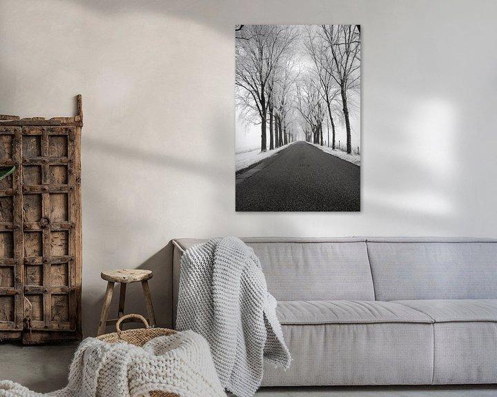 Sfeerimpressie: Landweg door een bevroren winters landschap in de IJsseldelta van Sjoerd van der Wal