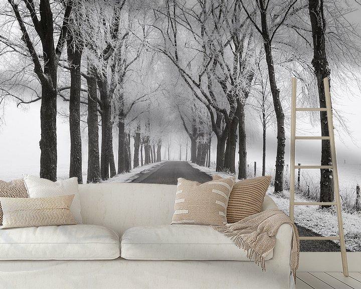 Sfeerimpressie behang: Landweg door een bevroren winters landschap in de IJsseldelta van Sjoerd van der Wal