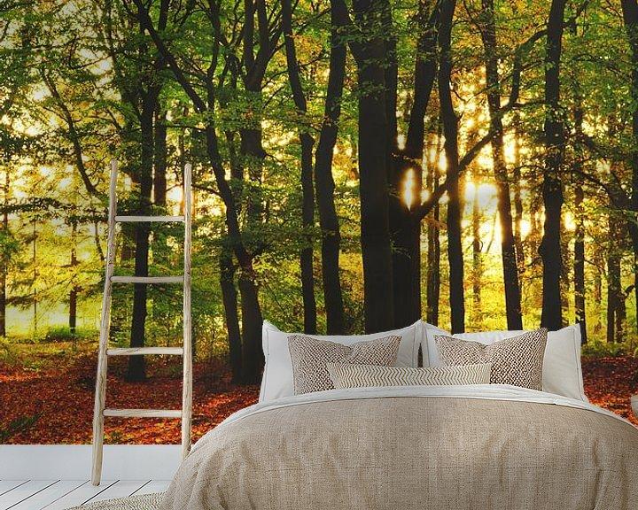Sfeerimpressie behang: Herfst kleuren van Lizet Wesselman