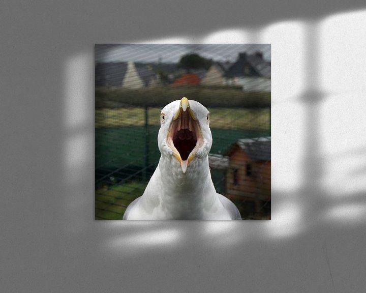 Sfeerimpressie: Meeuw van Ineke Klaassen