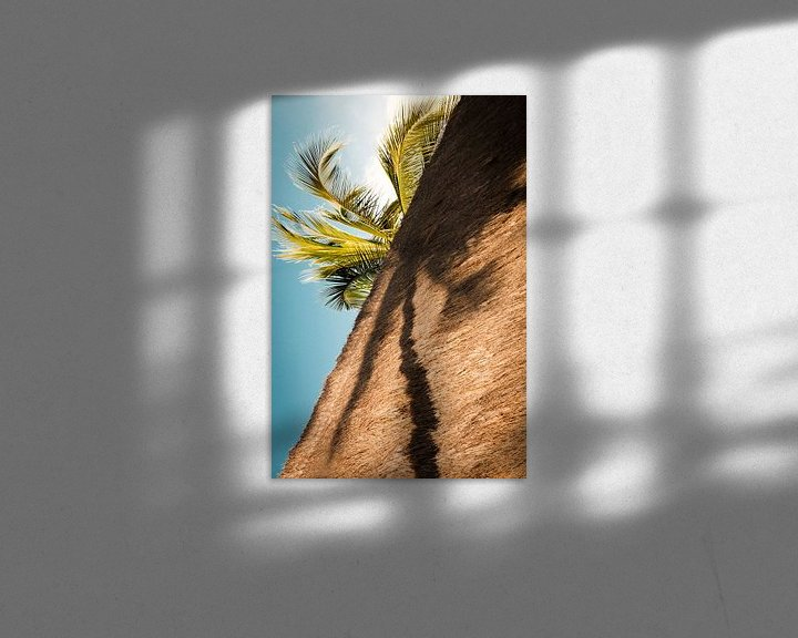 Sfeerimpressie: Palmboom in de schaduw.  van Ellis Peeters
